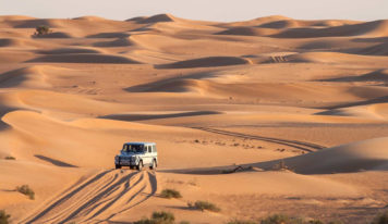 Why a Desert Safari Should Be on Your Dubai To-do List